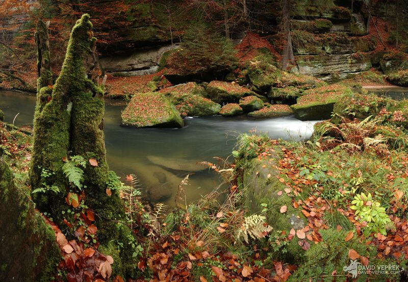 david_veprek-landscape-06
