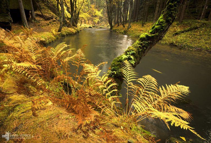 david_veprek-landscape-20