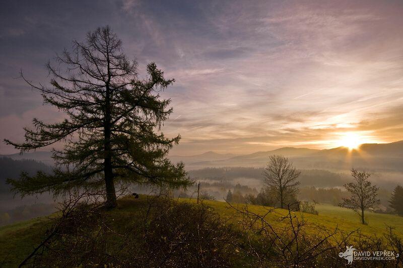 david_veprek-landscape-25
