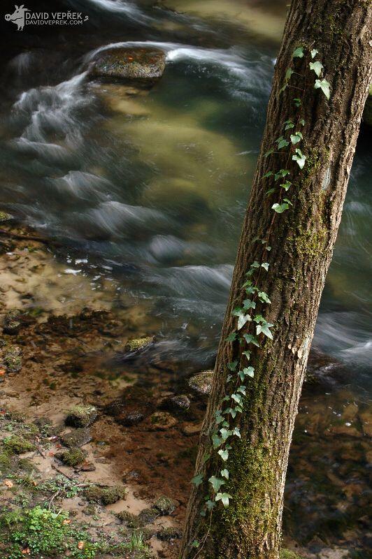 david_veprek-landscape-26
