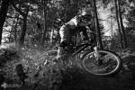 david_veprek-action-01