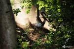 david_veprek-action-38
