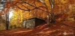 david_veprek-landscape-13