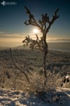 david_veprek-landscape-30
